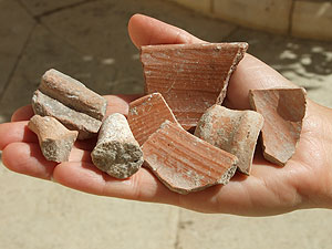 Finds including pottery fragments from the Temple Mount, dated to the First Temple period (Courtesy: IAA)