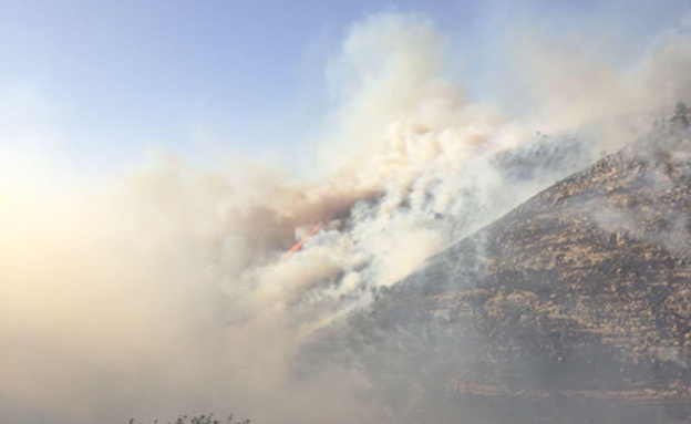 A large forest fire in the Jerusalem Hills, near the communities of Ma'ale Hahamisha and Nataf (Fire Brigade Spokesperson's unit)