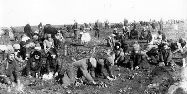 Children dug up frozen potatoes in the field of a collective farm in the village of Udachne during the Soviet-imposed famine in Ukraine, called the Holodomor, in which more than ten-million people perished between 1930-1933 (Public domain)