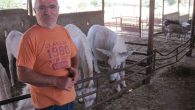 It costs Zvi Tamuz about $250 a month to care for each of his rescue animals. Steve Lipman/JW