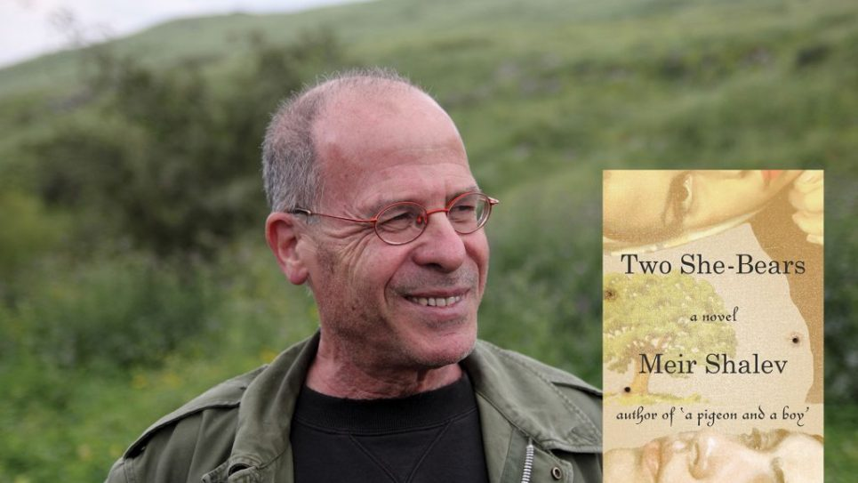 For the first time in his fiction, Shalev's narrator is a woman. Dan Porges