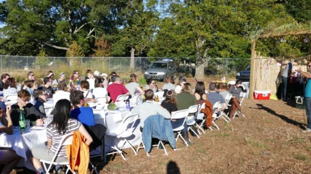 news-sukkot-farm-to-table