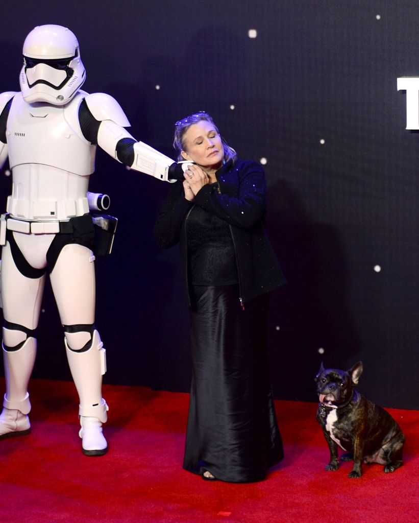 Carrie Fisher with her dog Gary as she arrives to the Star Wars: The Force Awakens European Premiere( Photo credit should read: Anthony Devlin/PA Wire