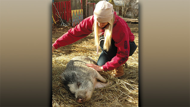 Ramapo College environmental studies major Margaret Herbert showing some love to Wilbur the rescue pig.