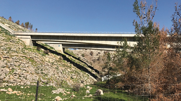 Each of the new railway bridges was designed to have minimum impact on the valleys below. (Israel21C)