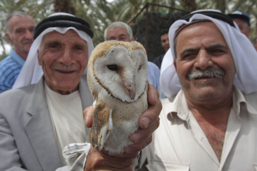 arabs holding owl