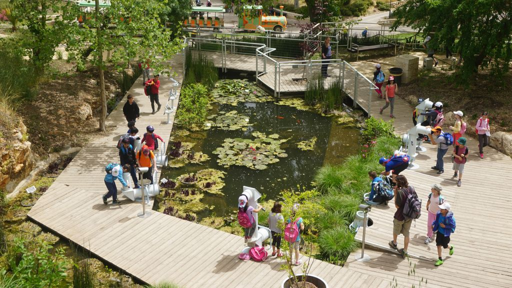 The Discovery Trail is an area of the Botanical Gardens designed for children. (Judith Magnes)