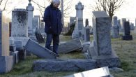 A man looking at fallen tombstones at the Jewish Mount Carmel Cemetery in Philadelphia, Feb. 26, 2017. JTA