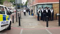 Officers detaining the man in question.   Picture credit: Shomrim N.E. London