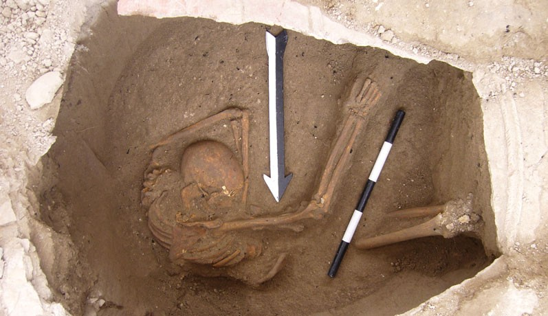 Canaanites Survived: DNA Shows Israelites Didn't Wipe Them Out