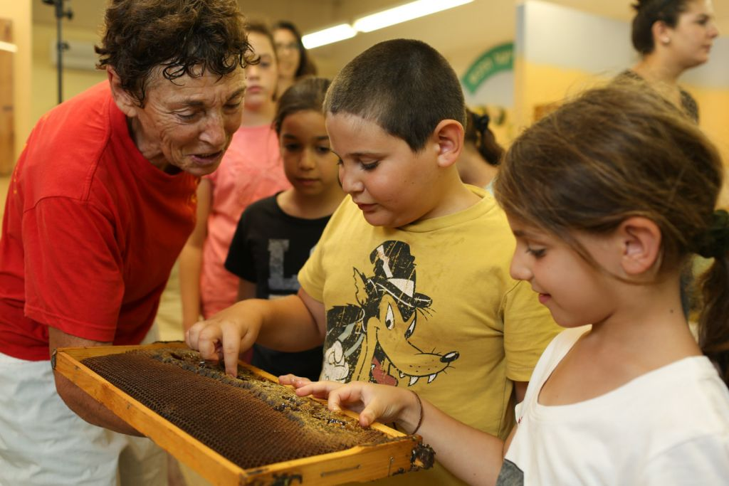 Kids learn about the bees at Kibbutz Yad Mordechai, which is offering great prices for visitors at the end of the summer season (Courtesy Yad Mordechai)