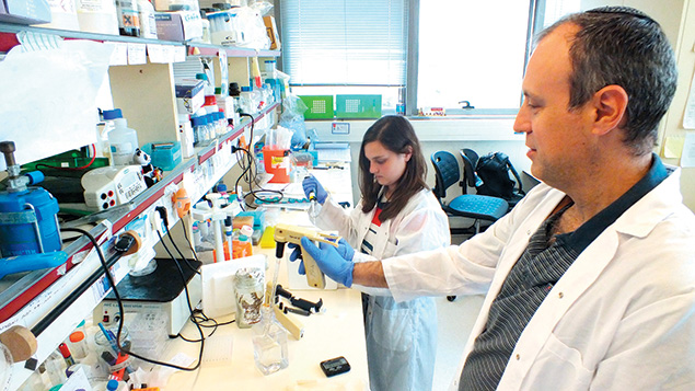 Prof. Yaron Shav-Tal and biology student Chavi Cohen are at work in Bar-Ilan University.