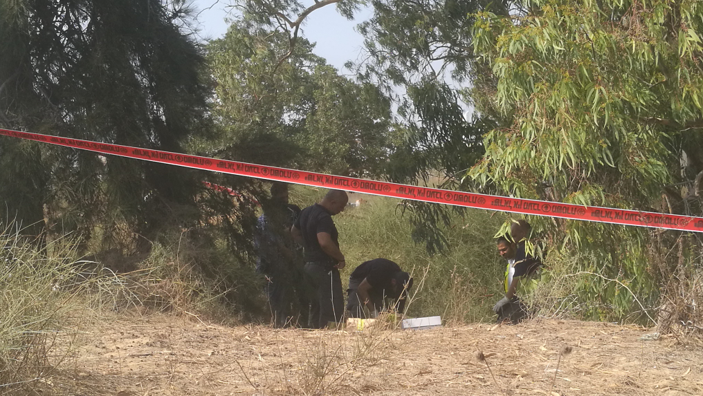Police find body of missing pregnant Israeli