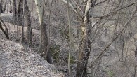 Babi Yar ravine which was the location of the massacre of tens of thousands of Jews.