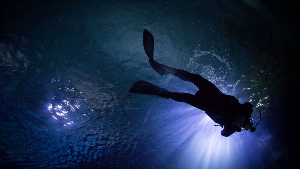 A scuba diver in one of the tanks of the still-unopened Jerusalem aquarium (Hadas Parush/Flash 90)