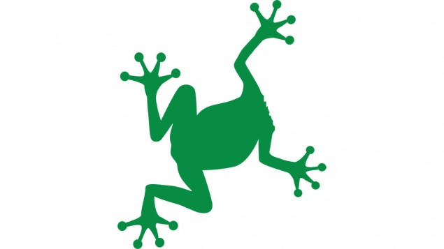 03-1-F-Frog