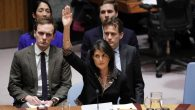 Nikki Haley voting at the United Nations Security Council