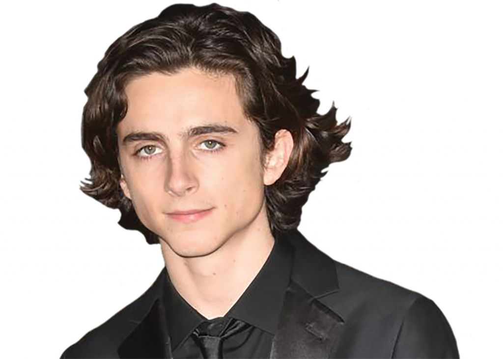 Call me Timothee Young actor Timothee Chalamet is up for best actor this year