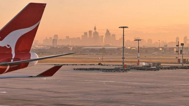 The view of Sydney at dawn from the airport, with a Qantas plane
