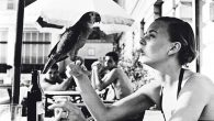 Shelagh Wilson with parrot, Copacobana, 1951 -® Victoria and Albert Museum, London