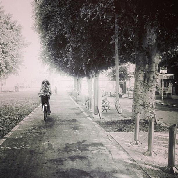 December 23, 2012 - #timesofisrael Photo of the Day: A Winter Ride down #rothschild in #telaviv. Photo by @irahok