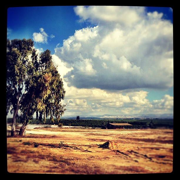 December 16, 2012 - #timesofisrael photo of the day: Winter on Kibbutz Naan. Photo by @expatbarbie