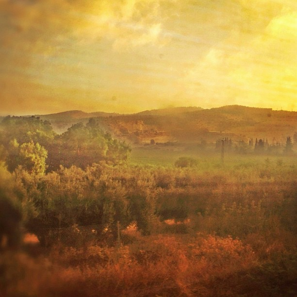 A morning train ride into #jerusalem
