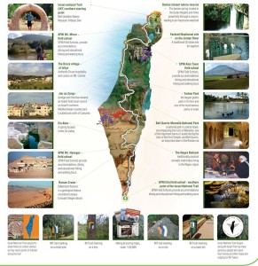 The Israel National Trail (map courtesy of the Society for the Protection of Nature in Israel, http://www.natureisrael.org/cms_uploads/Israel%20National%20Trail%20Documents/IsraelNationalTrail_map.jpg)