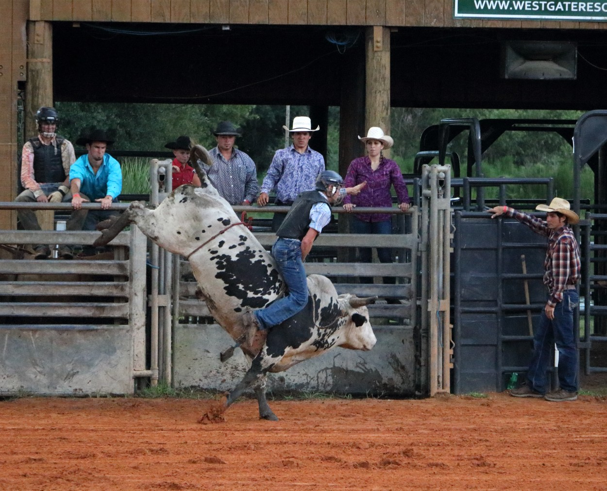 River Ranch Florida >> Saddle Up At Florida S Westgate River Ranch Atlanta Jewish Times