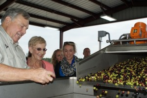 Courtesy Georgia Olive Growers Association Georgia first lady Sandra Deal checks out the olive processing at one of the state's operations.