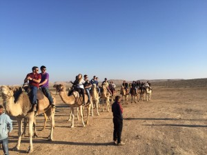 A camel ride is part of the Birthright experience for the Georgia Tech group.