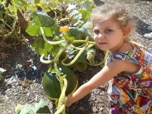 The Sunshine School pupils even grew a pumpkin in the fall.