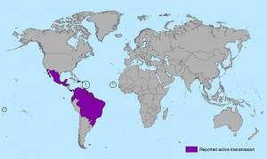 Emory's Uriel Kitron to Seek Zika's Secrets 2