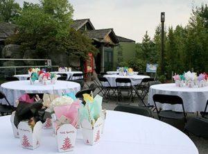Chinese-themed dining is popular at Zoo Atlanta's Panda Veranda.