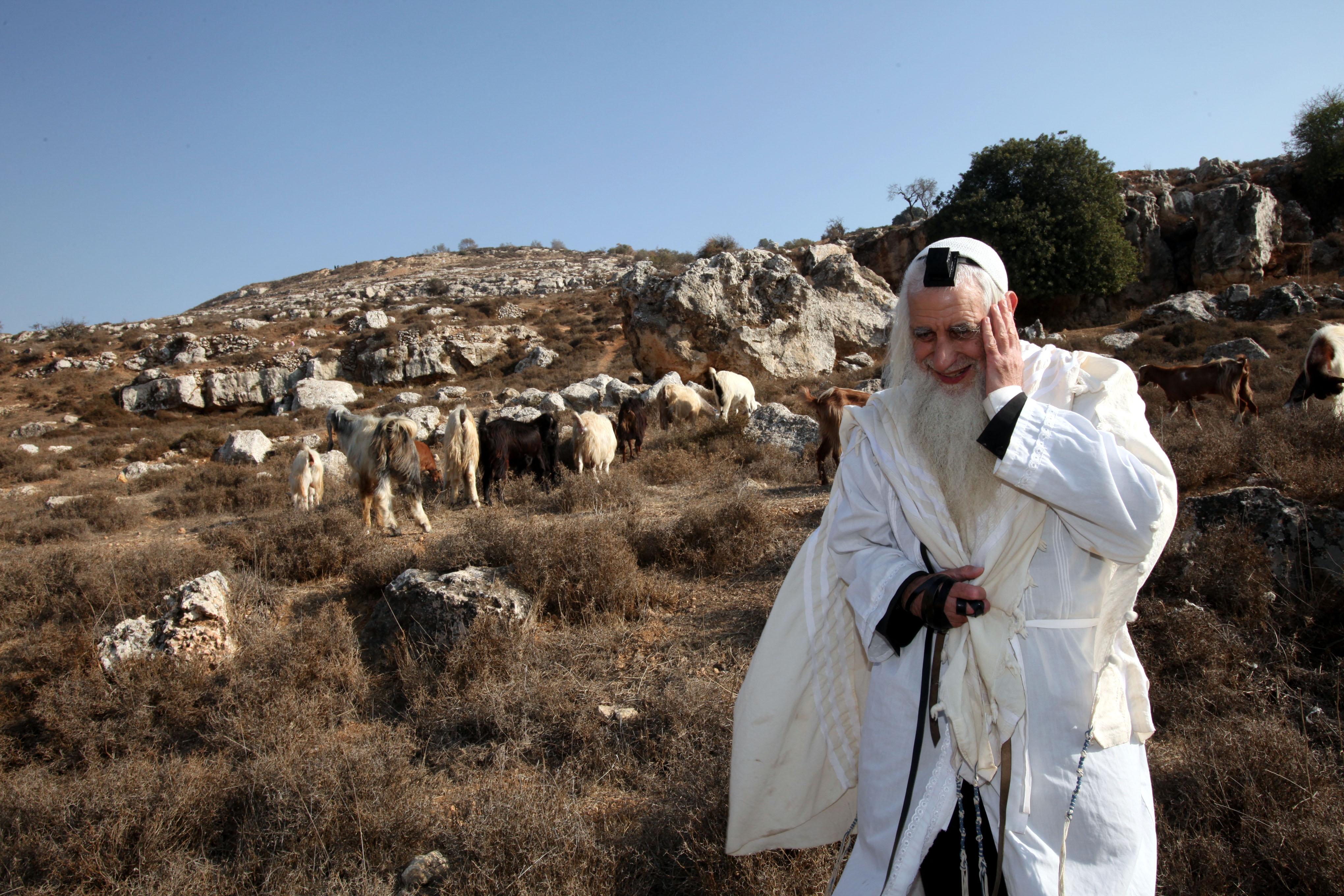 Master of prayer and master of the field. The late Rabbi Menachem Froman (photo credit: Yossi Zamir/Flash90)