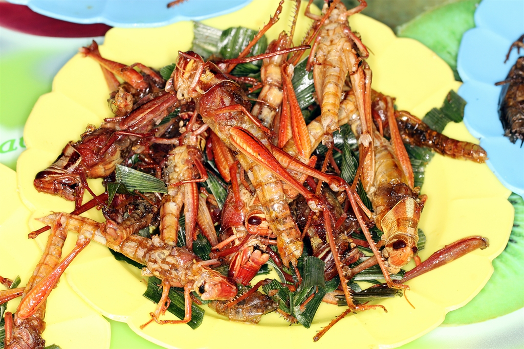 fried locusts (image via Shutterstock)