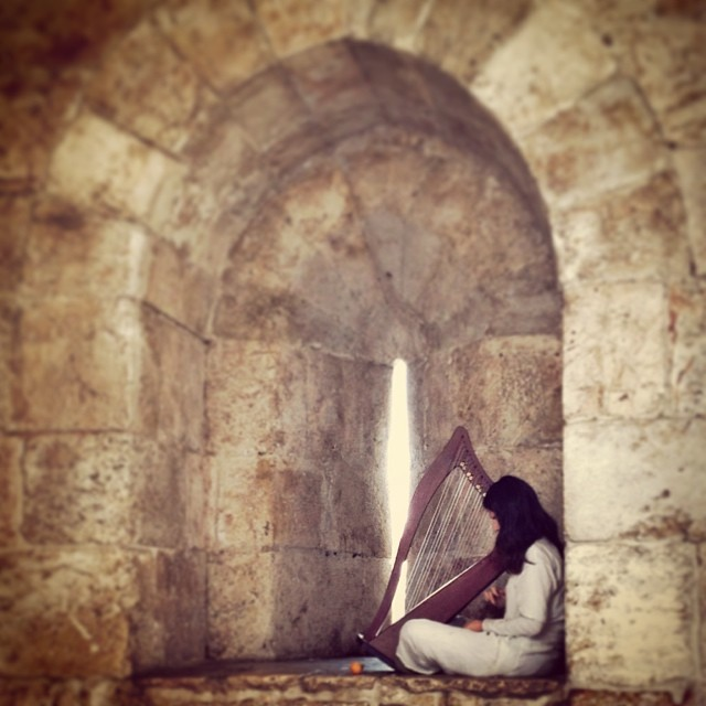 """""""Jerusalem is Palestine"""" and other things I love about Israel"""