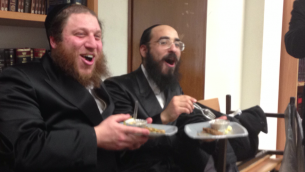 Shmaltz and freilich