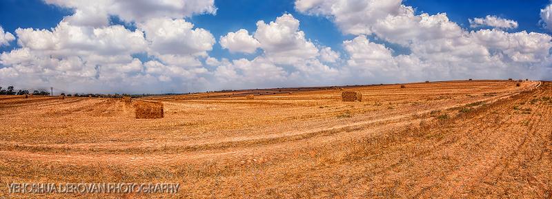 Rolling fields... Photo by Yehoshua Derovan