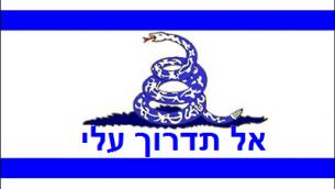 Libertarian Flag