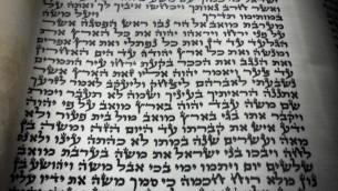 Torah scroll completion .jpg-201813
