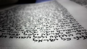 Torah scroll completion .jpg-210223