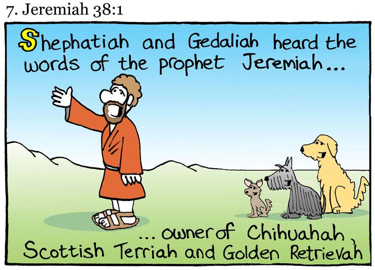 June-9---Dog-Version-Bible-(7)---web