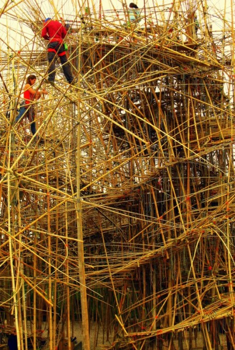 Double Helix Rising on Big Bambu by Doug and Michael Starn, © 2014 by Heddy Abramowitz