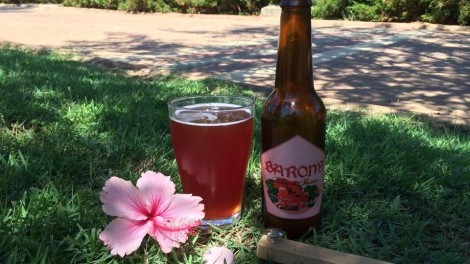 micro-small micro-brew Barons Hibiscus beer stands out as unique, aromatic and tasty