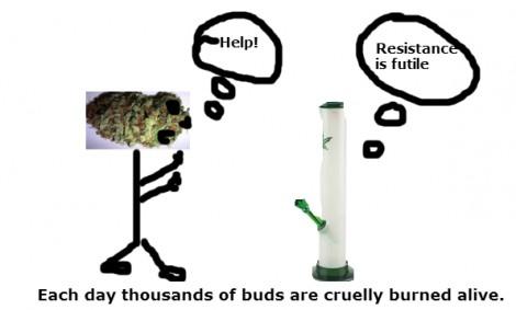 weed  is murder