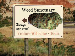 Give me your tired, your poor, Your huddled masses  of weed yearning to breathe free...
