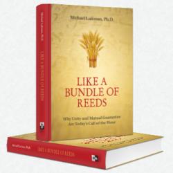 bundle_of_reeds