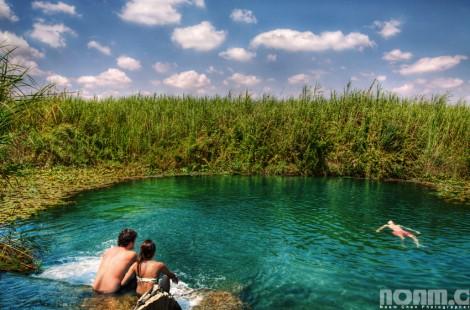 yarkon-national-park-nofarim-pond