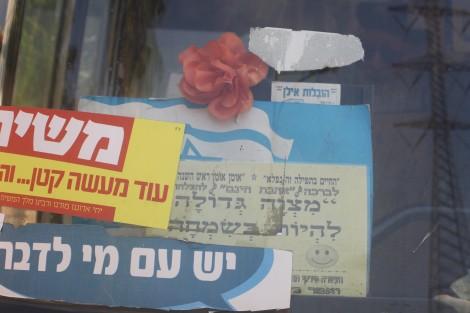 Aug 23 Or Yehuda morning 012